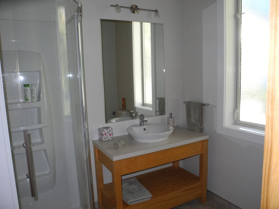 Ensuite contains a toilet, roomy shower and well designed vanity unit.  Luxurious with under tile floor heating and heated towel rail.