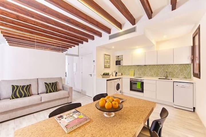 Apartamento de diseño / La Llonja Casco Antiguo 2