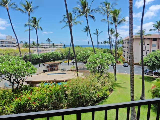 Kihei Akahi D-211: Ocean View,Opposite Great Beach