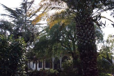 Fascino e quiete della campagna - Vila