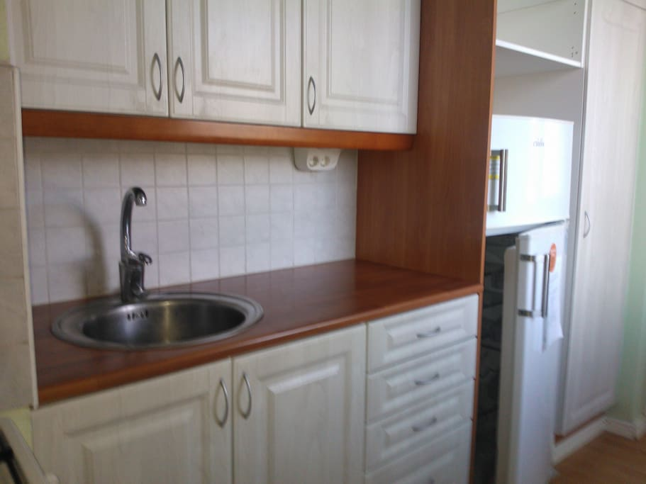 Modern kitchen with large fridge freezer all appliances and equipment you could need