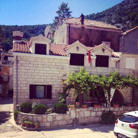 Your family house near Dubrovnik - Trstenik