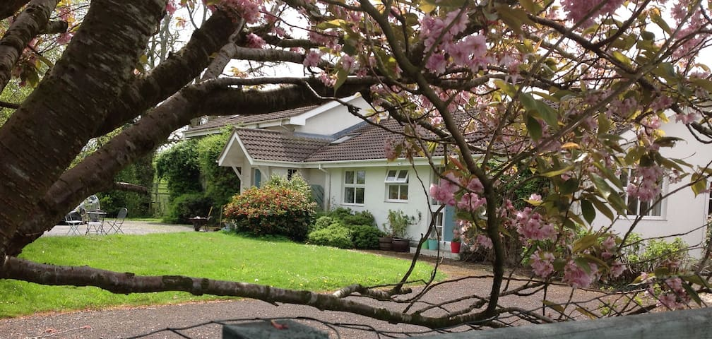 Curlew Cottage-self contained annex - Killyleagh