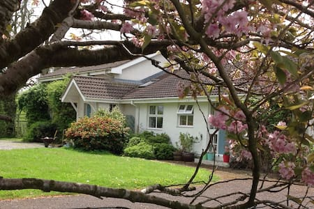 Curlew Cottage-self contained annex - Killyleagh - House