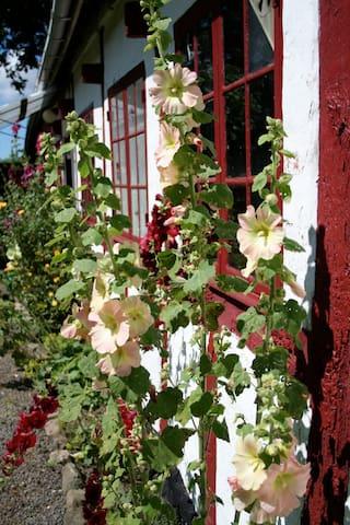 Skønt hus med sjæl på Bornholm - Østermarie - Casa