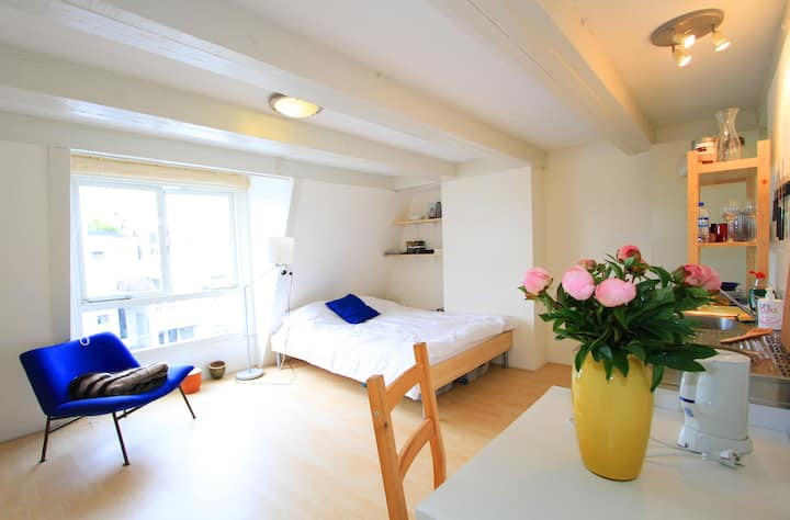 Lovely self contained studio in Oud West - Apartments for ...