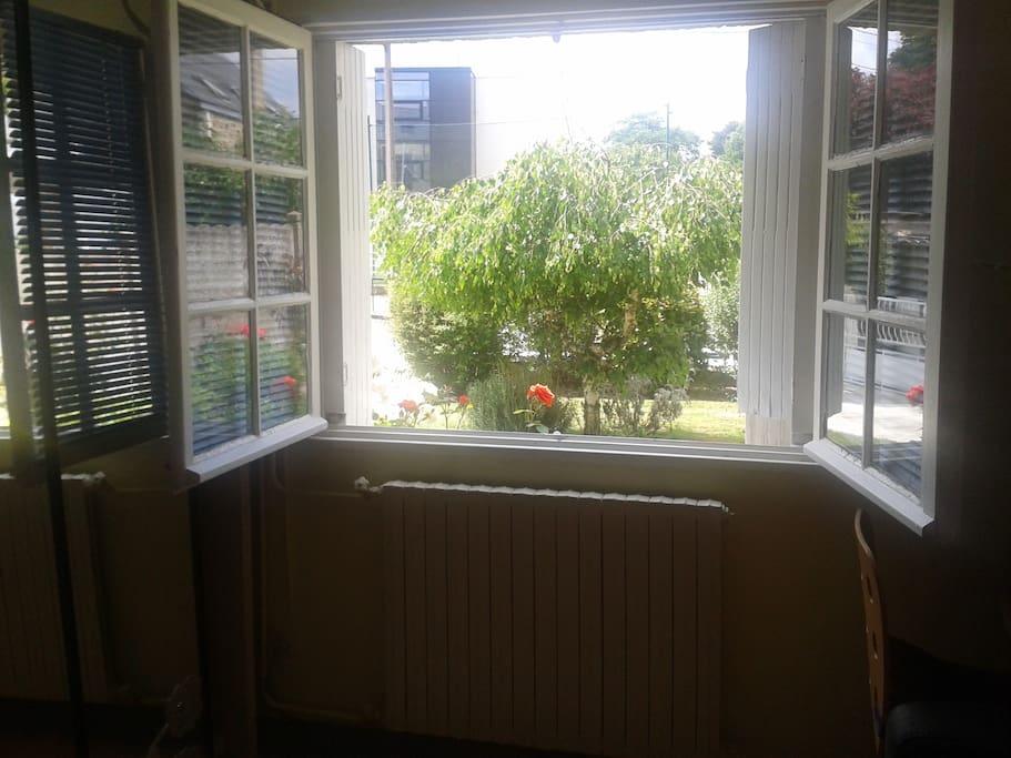 la vue de la chambre sur le jardin