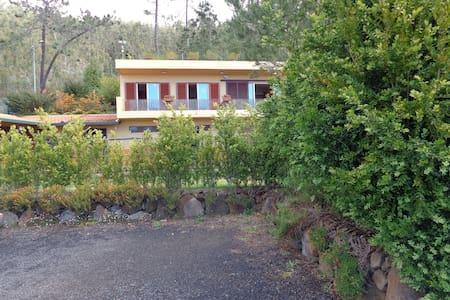 Casa Paddock - Escapada Cavaleiros - Estreito De Câmara