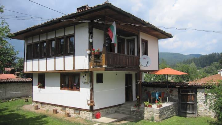 Lyutova house