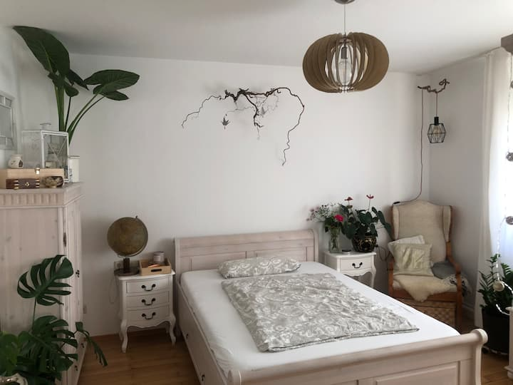 Zimmer, central, Gästezimmer, Guestroom