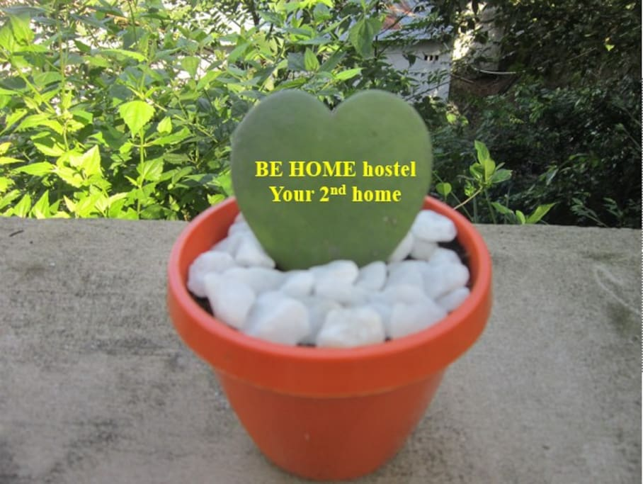 Welcome guests to Be Home