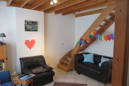 Cosy house near the Botanical garden with a patio - Leuven