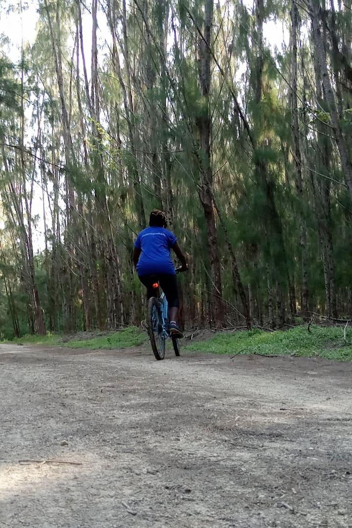 Drift in the Wilderness