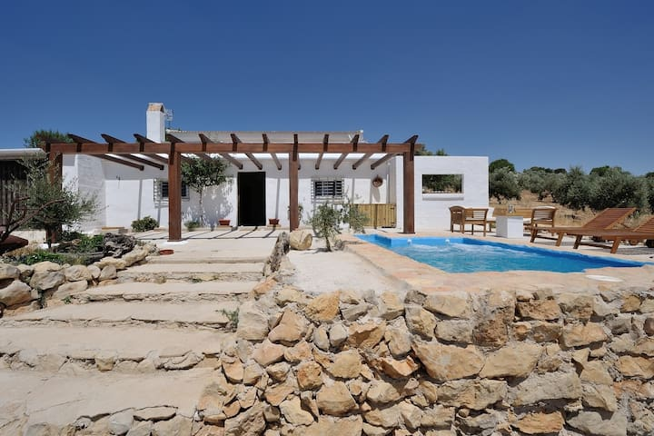 B&B on olive farm near Granada - Montejícar - Bed & Breakfast