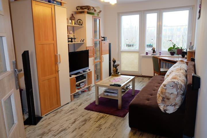 Big, nice room near the city center - Poznań - Apartamento