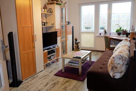 Big, nice room near the city center - Poznań