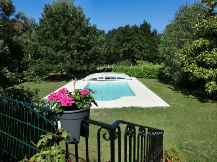La vue sur la piscine ...