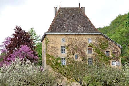 le gîte du Clos Dauphin - LA BALME ES GROTTES - Castle