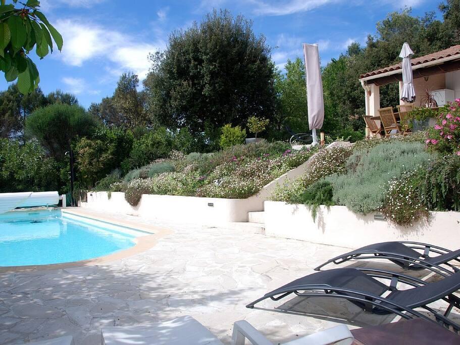 Jardin fleuri et piscine.