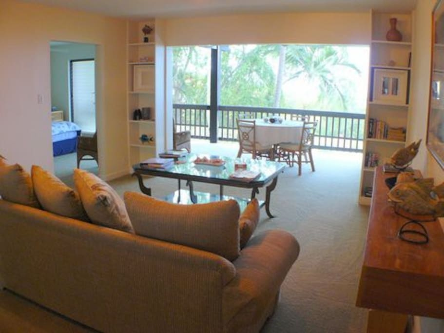 This is the view from the kitchen looking out onto the lanai.