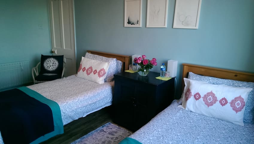 Friendly home ,long stays welcome - Dublin - House