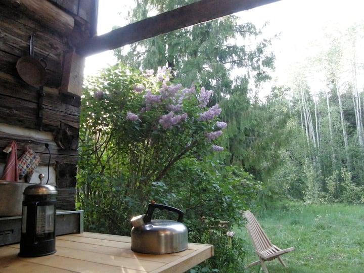 Ptarmigan Hills Wilderness Cabin