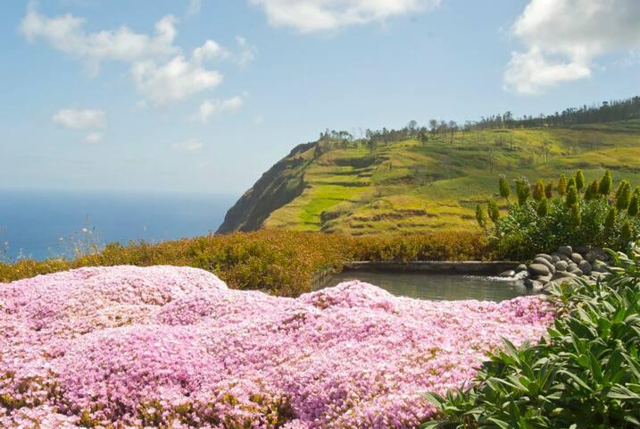 Droomvilla aan de oceaan - Ponta Do Pargo