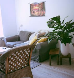 This is a spacious one bedroom apartment in the citycentre (Vismarkt) of Groningen. Close to the station, shops, bars, restaurants. There are probably no other places in the centre that offers a garden! And the most beautifull thing is.. it's quiet!