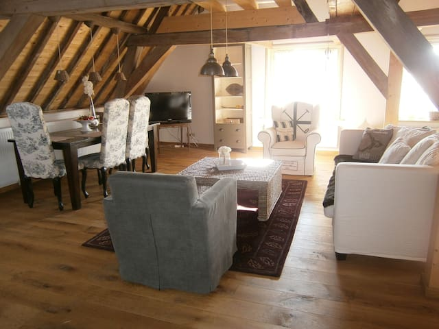 luxe penthouse in centrum Brielle - Brielle - Apartament