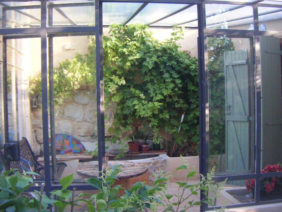 Véranda privative entourée de raisin grimpant et petit bassin