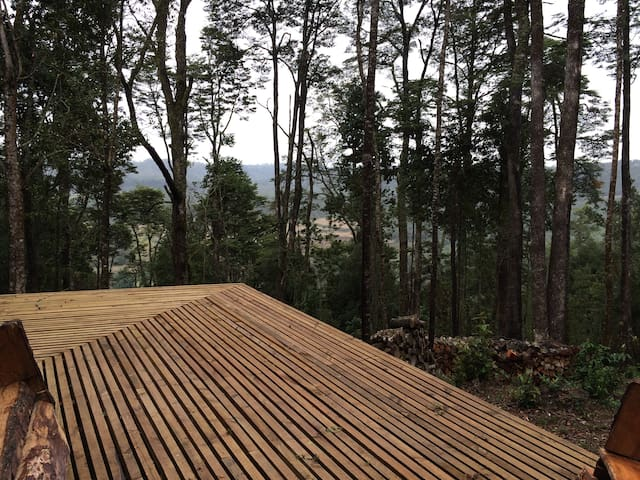 Deck con vista al bosque