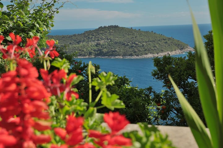 Double room Argosy near Old Town - Dubrovnik - Talo