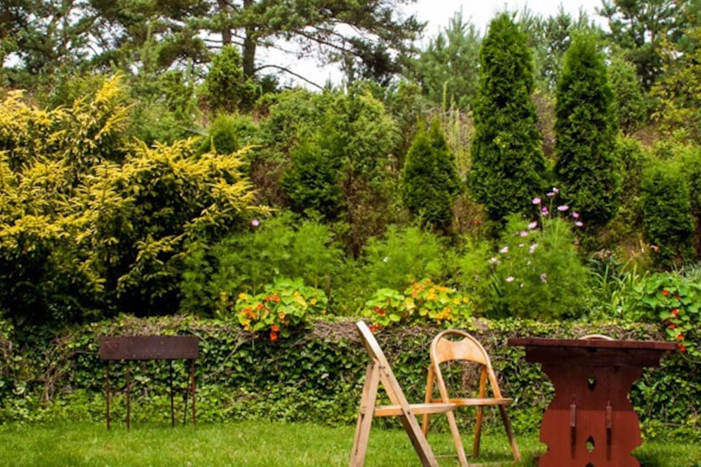 Resting place with some outdoor furniture where you can read morning newspapers, have a cup of coffee. In the evening you can grill some meat (there is a grill and roasting – jacks) and have some wine or beer.