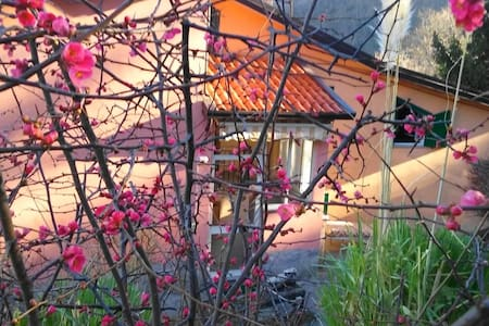 casa vacanze la Castagnara - Rotonda - Hus