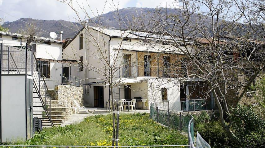Design Apartment 1