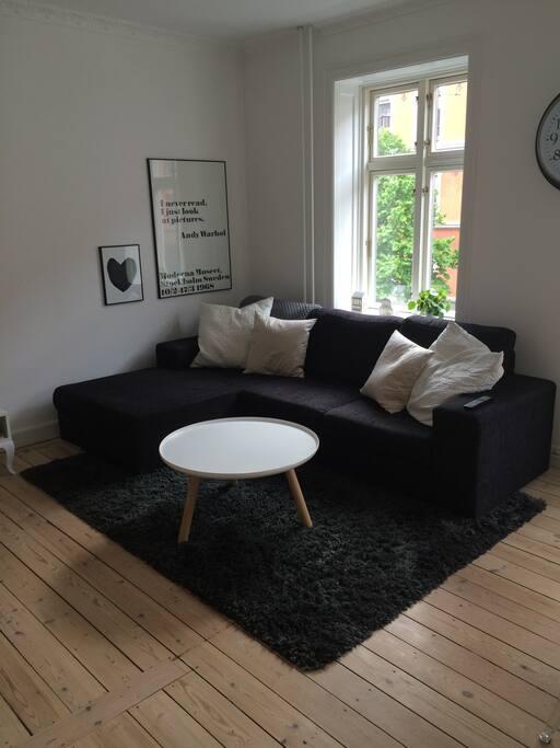 Livingroom in Scandinavian style