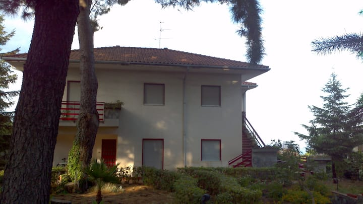 Your vacation on Mount Etna