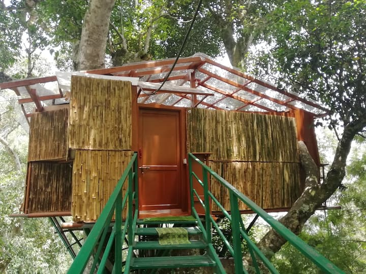 Tipperary TreeHouse In Paradise