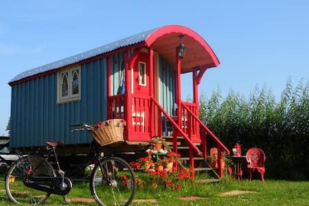 Beautiful shepherd's hut - Norfolk - Hut