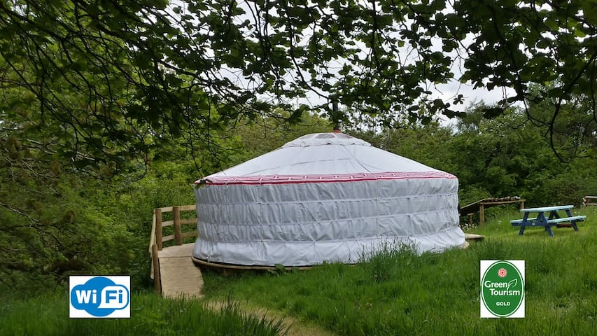 Luxury yurt & private bathroom - Cookbury, Devon - Yurt