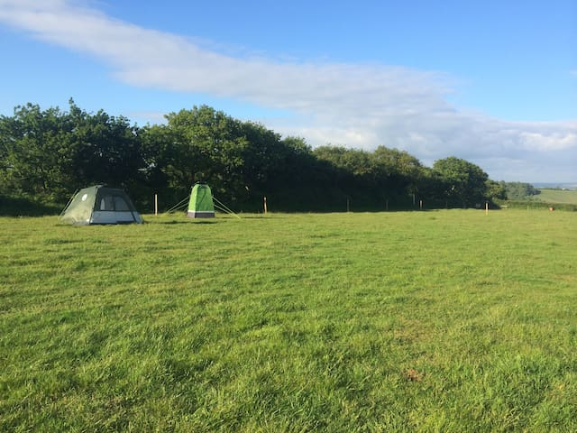Coleman 4 man tent pitched ready2go - Exeter - Tent