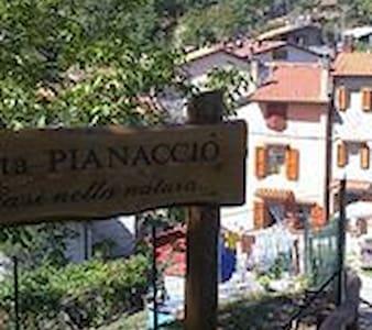 2 A PIANACCIO ORSIGNA PRACCHIA - Pracchia  - Lägenhet