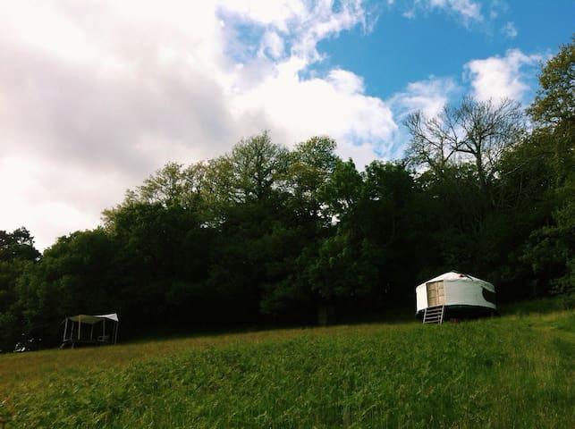 Hilltop Yurt with Panoramic Views - Lustleigh - Tenda
