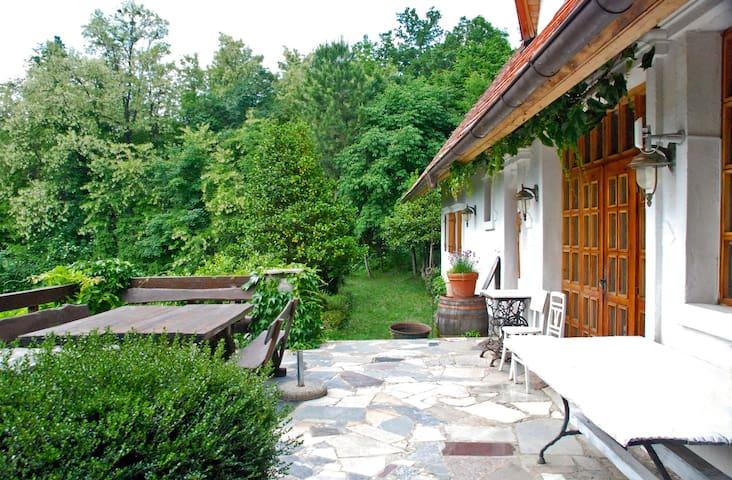 Edvard's Getaway - Jablovec - Casa