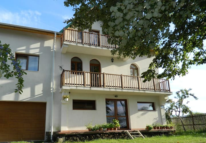 Belegania - nice countryside B&B nearby Pitesti