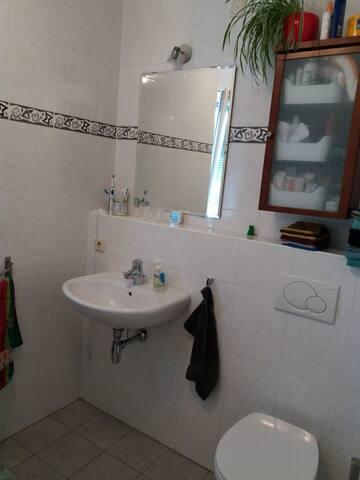 wastafel, toilet in badkamer