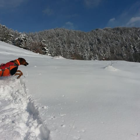 Alpine Chic - Saint-Marcel - Chalet