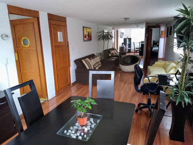 Apartment in the heart of the Condesa