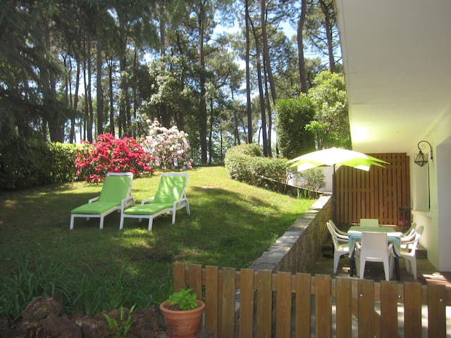T4 - 6/8 pers - 3 chambres - Terrasse + Jardin
