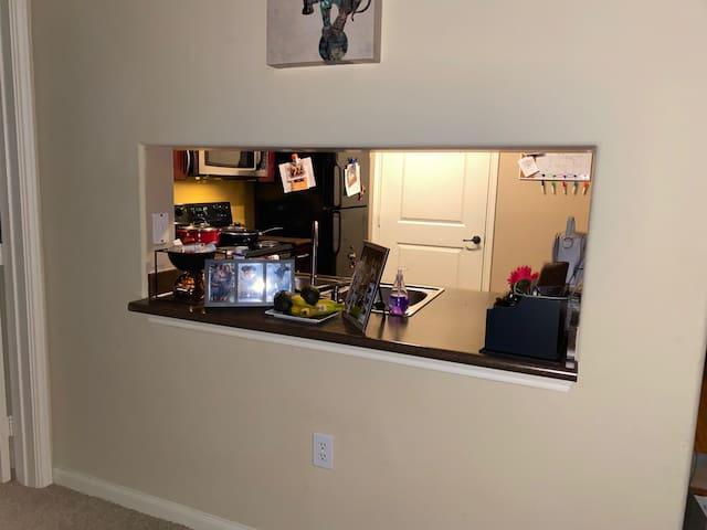 1 bedroom apartment, owner out traveling